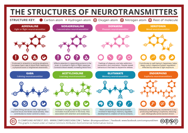 Chemical-Structures-of-Neurotransmitters